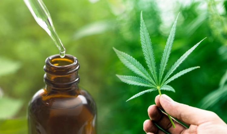 CBD hemp oil